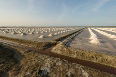 Salt farm in Thailand Stock Photography