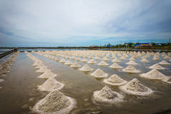 The salt farm. Stock Photos