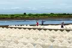 The salt farm. Stock Photo