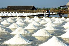 Salt farm trajectory of the Samut Sakhon Stock Photos