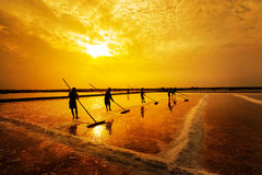 Salt farming royalty free stock photos