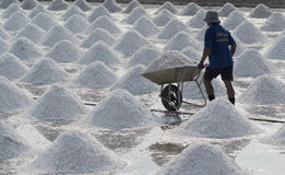 Salt farming Stock Photography