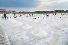 Salt farming career Stock Photos