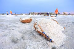 Salt farming career Royalty Free Stock Photography