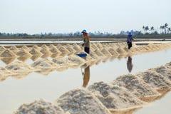 Salt farming Royalty Free Stock Images