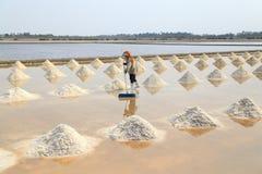 Salt farming Royalty Free Stock Photo