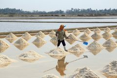 Salt farming Royalty Free Stock Images