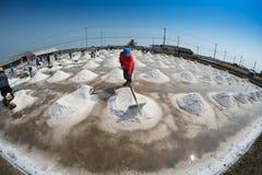 Salt farming in Thailand Stock Images