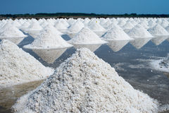 Salt farming in Thailand Stock Image