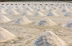 Salt farming in Thailand Royalty Free Stock Image