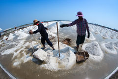 Salt farming in Thailand Royalty Free Stock Images