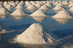 Salt field Royalty Free Stock Image