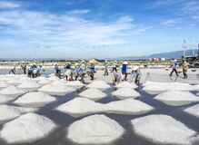 SALT FIELD Royalty Free Stock Photo