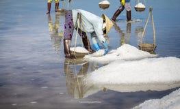 SALT FIELD Stock Photography