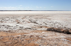 Salt field in desert Stock Images