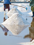 Salt field Stock Photography