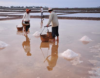 Salt field in Kampot, Cambodia Royalty Free Stock Images