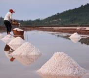 Salt field in Kampot, Cambodia. Salt on the field in Kampot, Cambodia. Shallow focus Stock Image