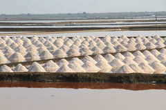 Salt field at Samut Sakhon, Thailand. Salt pan at Samut Sakhon Province in Thailand Portrait view Stock Photography