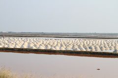 Salt field at Samut Sakhon, Thailand. Salt pan at Samut Sakhon Province in Thailand Portrait view Stock Photo