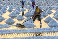 Salt field from samutsakorn thailand Stock Photos