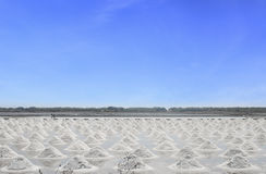 Salt field in Thailand Royalty Free Stock Images