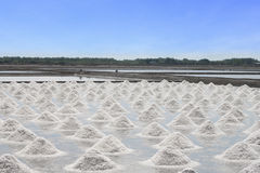 Salt field in Thailand Royalty Free Stock Photography