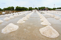 Salt field in thailand Stock Photos