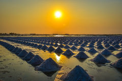 The salt field in thailand Royalty Free Stock Image