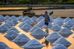 Salt field view on sun set time. Shoot in the salt field royalty free stock photography