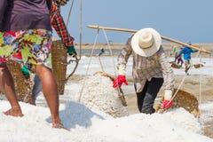 Salt field worker carrying salt with traditional shoulder pole with baskets during salt harvest. In Ban Laem, Thailand stock images