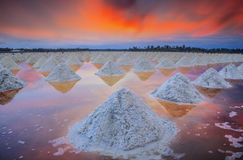 Salt fields Royalty Free Stock Photos