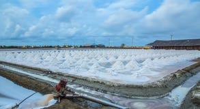 Salt fields Stock Images