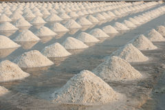Salt fields with piled up sea salt Royalty Free Stock Photography
