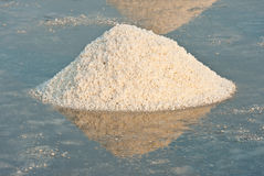Salt fields with piled up sea salt Stock Photo
