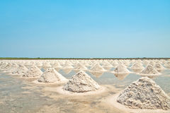 Salt fields with piled up sea salt of Thailand Stock Photos