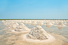 Salt fields with piled up sea salt of Thailand Royalty Free Stock Images