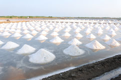 Salt fields Stock Photography