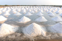 Salt fields Royalty Free Stock Images
