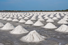 Salt fields in Thailand. Royalty Free Stock Photo