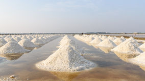 Salt fields in thailand Stock Images