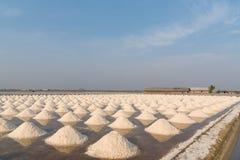 Salt fields in thailand Stock Photos
