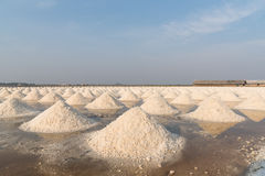 Salt fields in thailand Royalty Free Stock Photography