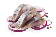 Salt fillet herring Stock Photos