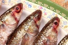 Salt fisk för arabisk egyptier royaltyfria bilder