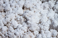 Salt flakes Royalty Free Stock Image