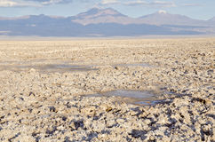 Salt Flat in Atacama Desert #2 Royalty Free Stock Photo