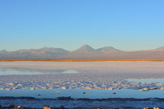 Salt Flat and the Laguna Tebinquiche in Atacama Desert, Chile Stock Photos