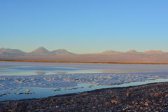 Salt Flat and the Laguna Tebinquiche in Atacama Desert, Chile Stock Photo