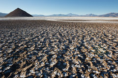 Salt flat of Maricunga, Chile Royalty Free Stock Images
